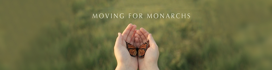 Moving for Monarchs Video Image: http://vimeo.com/82450284