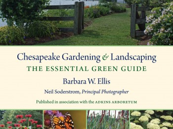 """""""Chesapeake Gardening & Landscaping"""" Available Now"""
