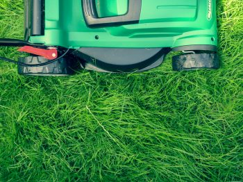 The Case for High Mowing