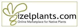 izel plants