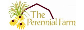 the perennial farm